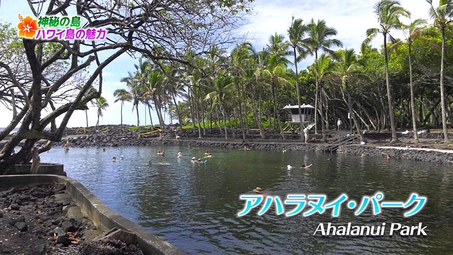 "Image: ハワイ特集第2弾: ""神秘の島・ハワイ島""で大自然を満喫!"