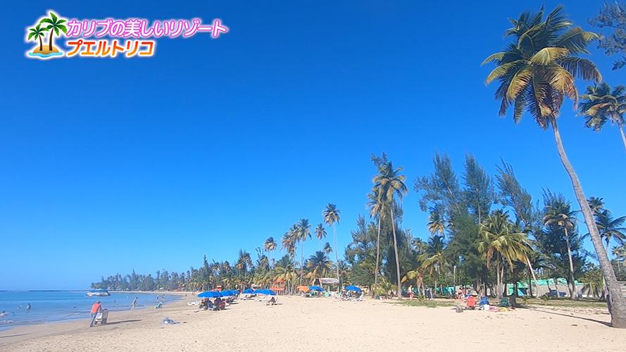 Image: カリブの美しいリゾート「プエルトリコ」を特集(1)