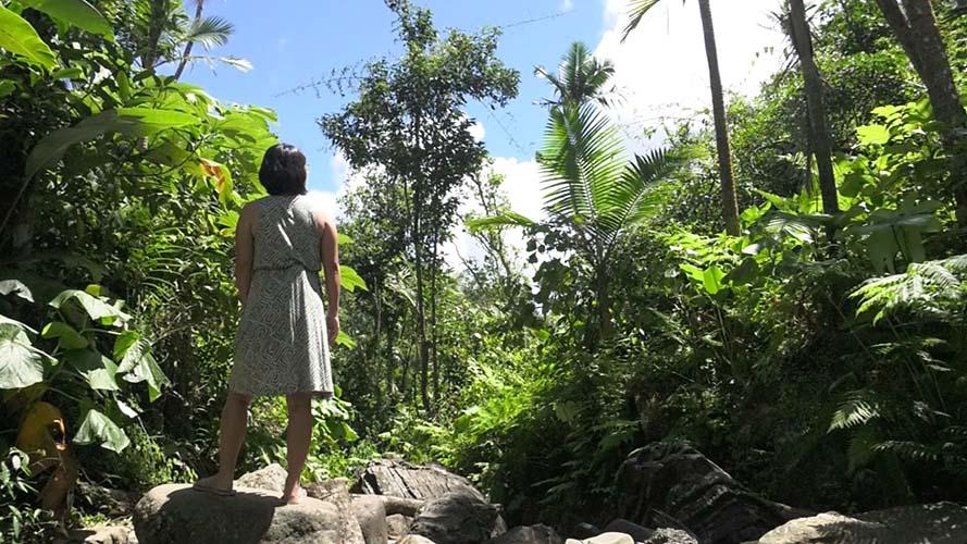 Image: カリブの美しいリゾート「プエルトリコ」を特集(2)大自然を満喫できるスポット